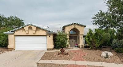 Tucson Single Family Home For Sale: 9174 N Eaglestone Loop