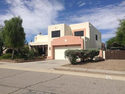 Tucson Single Family Home For Sale: 801 N Borderland Ln.