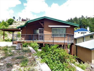 Mt. Lemmon Single Family Home For Sale: 12925 N Gila Avenue N
