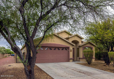 Tucson Single Family Home For Sale: 7163 S Parsons Tale Drive