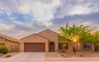 Tucson Single Family Home For Sale: 8146 N Circulo El Palmito