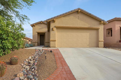 Green Valley Single Family Home For Sale: 521 W Chardin Drive