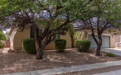 Tucson Single Family Home For Sale: 9568 E Corte Del Sol Brillante
