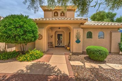 Tucson Single Family Home For Sale: 62392 E Redwood Drive