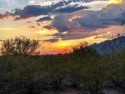 Tucson Residential Lots & Land For Sale: 5045 N Bear Canyon Road