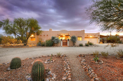 Tucson Single Family Home For Sale: 2867 N Lloyd Bush Drive