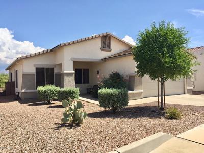 Tucson Single Family Home For Sale: 1260 S Desert Vista Drive