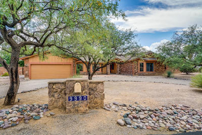 Tucson Single Family Home For Sale: 9990 E Buckshot Circle