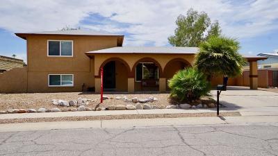 Tucson Single Family Home For Sale: 9710 E Barrudean Hills Street