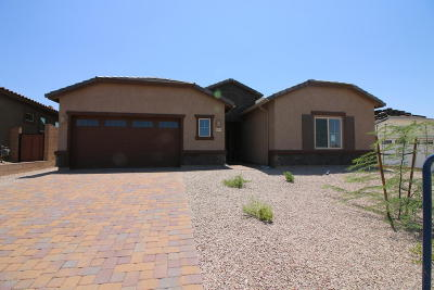 Marana Single Family Home For Sale: 6695 W Red Hawk Place