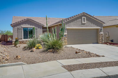 Sahuarita Single Family Home For Sale: 14228 S Camino Burgos