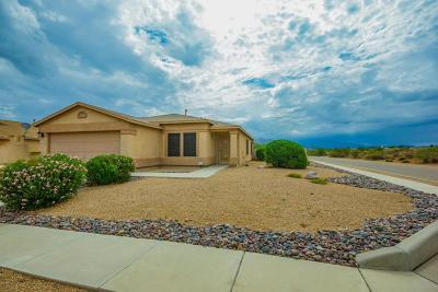 Tucson Single Family Home For Sale: 4369 S High Creek Way