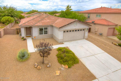 Pima County Single Family Home For Sale: 13708 E Oxmoor Valley Drive