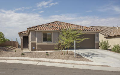 Tucson AZ Single Family Home For Sale: $289,900