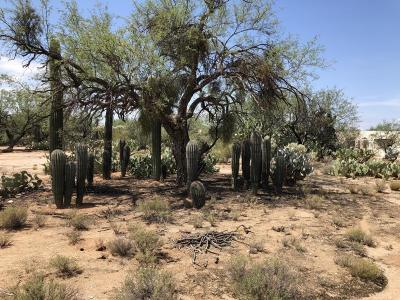 Tucson Residential Lots & Land For Sale: 11548 E Thunderbird Trail