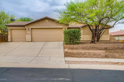 Vail Single Family Home For Sale: 458 E Sterling Canyon Drive