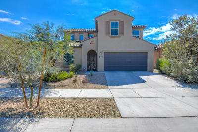 Tucson Single Family Home For Sale: 5587 S Sunrise Peak Road