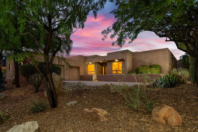 Pima County Single Family Home For Sale: 13899 N Bowcreek Springs Place