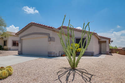 Marana Single Family Home Active Contingent: 5535 W Dove Loft Drive