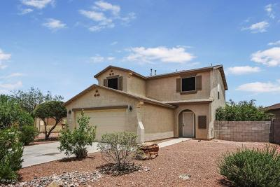 Single Family Home For Sale: 3787 E Sun View Court