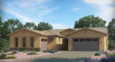 Oro Valley Single Family Home For Sale: 757 W Aviator Crossing Drive