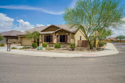 Marana Single Family Home For Sale: 11165 W Red Quartz Trail