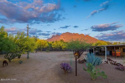 Oro Valley Single Family Home For Sale: 1000 W Calle Concordia