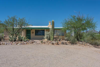 Tucson Single Family Home For Sale: 4445 N Newland Drive