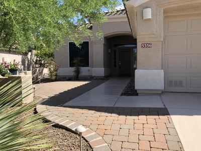 Marana Single Family Home For Sale: 5356 W Eagle Gulch Court
