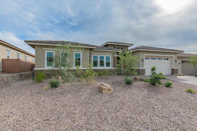 Marana Single Family Home For Sale: 7435 W Cactus Flower Pass