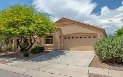 Tucson Single Family Home For Sale: 10507 E Carolina Willow Lane