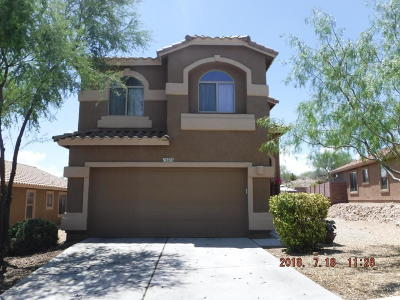 Pima County Single Family Home For Sale: 13270 E Alley Spring Drive