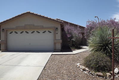 Tucson Single Family Home For Sale: 10358 E Roywood Way