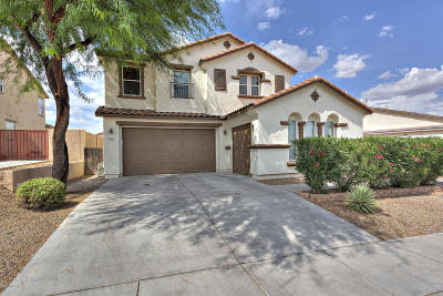 Sahuarita Single Family Home For Sale: 768 W Calle La Bolita