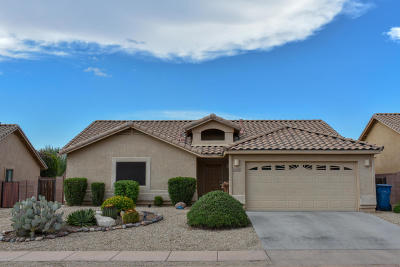 Sahuarita Single Family Home For Sale: 1061 E Stronghold Canyon Lane