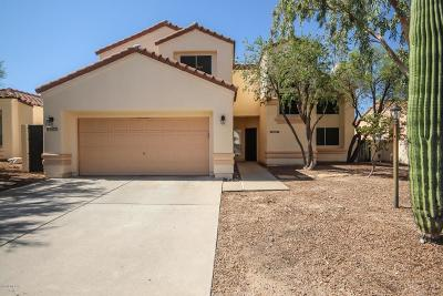 Tucson Single Family Home For Sale: 3573 W Thundercloud Loop