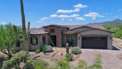 Marana Single Family Home For Sale: 12595 N Distant Wash Drive NW