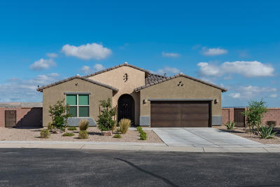 Sahuarita Single Family Home For Sale: 21 N Alum Canyon Place