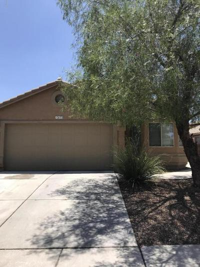 Pima County Single Family Home For Sale: 13172 E Mesquite Flat Spring Drive