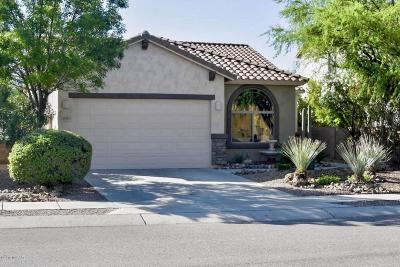 Pima County Single Family Home For Sale: 1171 W Doolan Drive