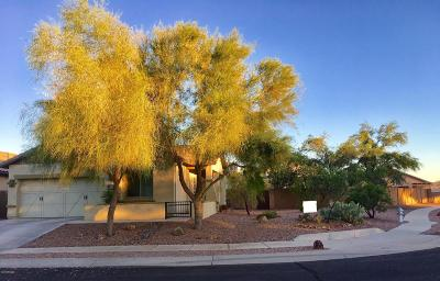 Tucson Single Family Home For Sale: 1277 W Montelupo Drive
