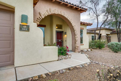 Sahuarita Single Family Home For Sale: 141 E Camino Rancho Cielo