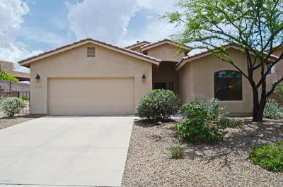 Single Family Home For Sale: 39709 S Horse Run Drive