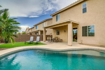Sahuarita Single Family Home For Sale: 14706 S Camino Tierra Alegra