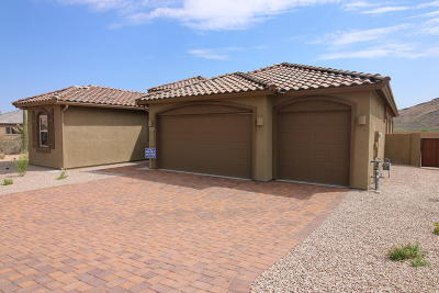 Tucson Single Family Home For Sale: 2652 W Starr Summit Court S