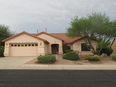 Pima County Single Family Home For Sale: 2336 E Desert Pueblo Pass
