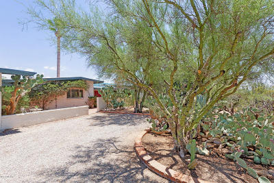 Tucson Single Family Home For Sale: 6702 N Andrea Doria Drive