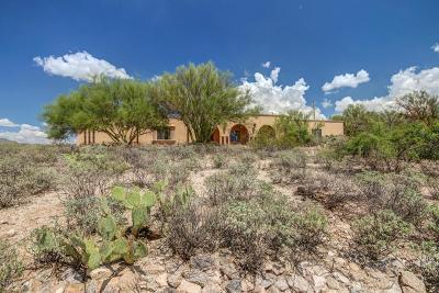 Tucson Single Family Home For Sale: 9740 E Bush Hill Place