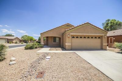Marana Single Family Home For Sale: 12718 N Fallen Fence Lane