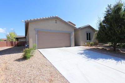 Sahuarita Single Family Home For Sale: 1083 E Empire Canyon Lane